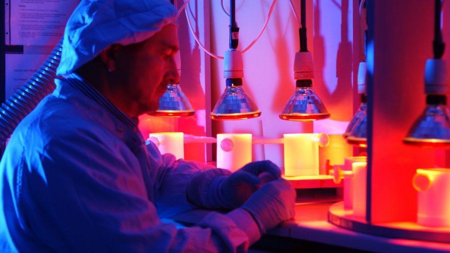 Prof. Eisenhauer im Labor