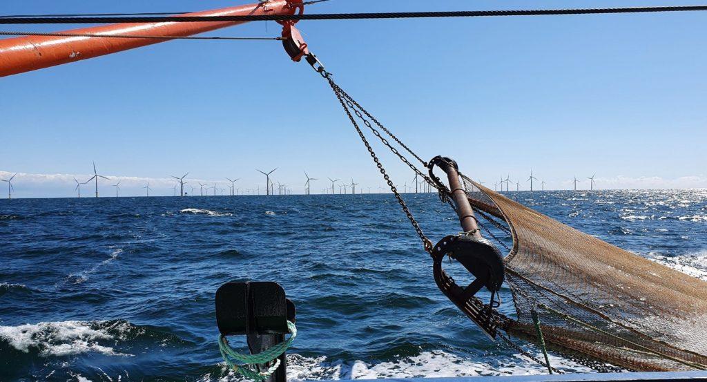 Baumkurre im Einsatz in der Nordsee