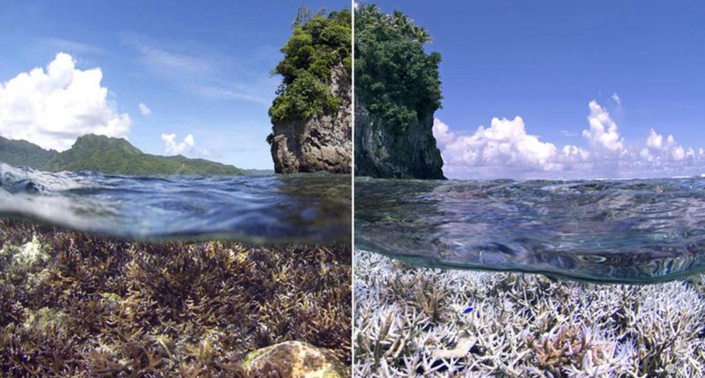 Großes Barrier-Riff vor Australien